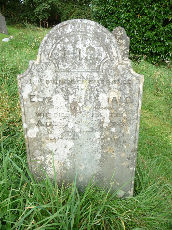 Headstone of Elizabeth Smale, nee Horn, (abt 1816-1895)