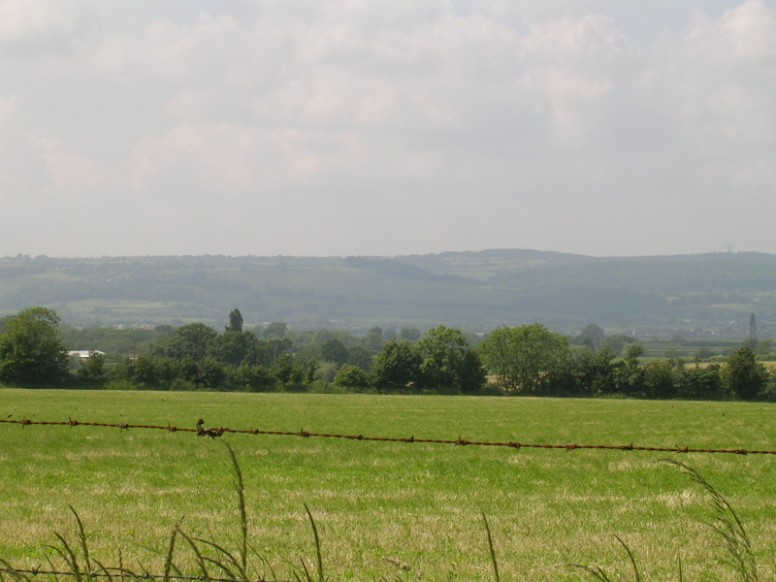 View towards the Forest of Dean from Overton Lane, Arlingham