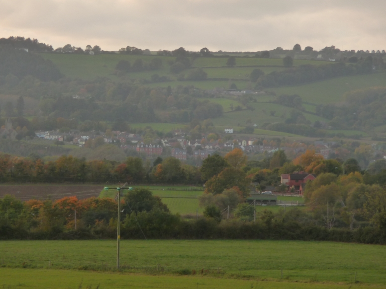View of Newnham from Arlingham
