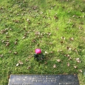 The Hibbitt grave in Drake Memorial Park, Plymouth, Devon